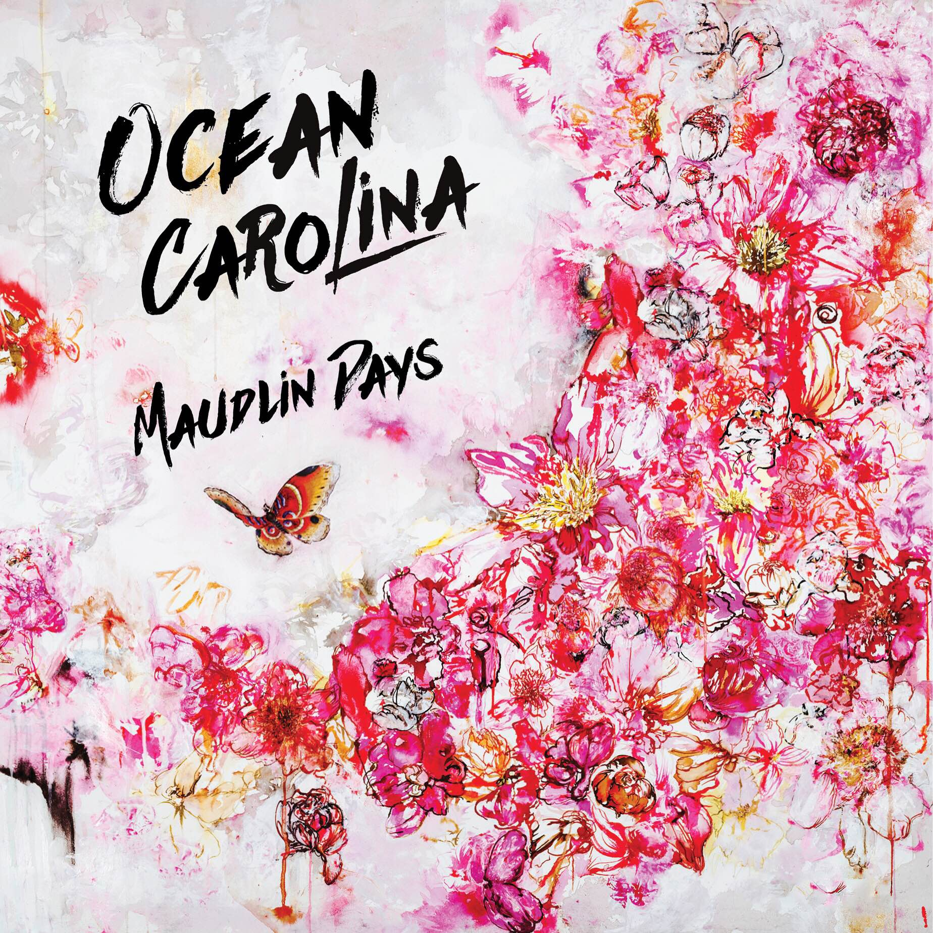 ocean carolina maudlin days